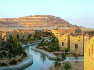 واحة سيوة جنة الصحراء