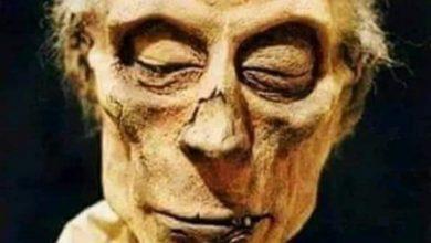 رمسيس الثانى، أول مومياء تحمل جواز سفر