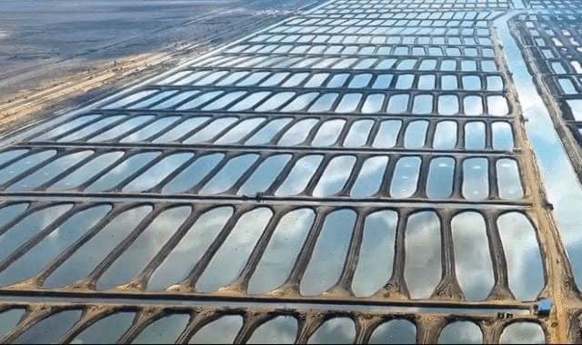 مشروع الاستزراع السمكي