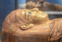زيرا السياحة والآثار والطيران المدنى يفتتحان متحفي الآثار المصرية بمطار القاهرة الدولي