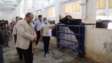 وزير الزراعة يتفقد مركز التلقيح الاصطناعي بالاسكندرية